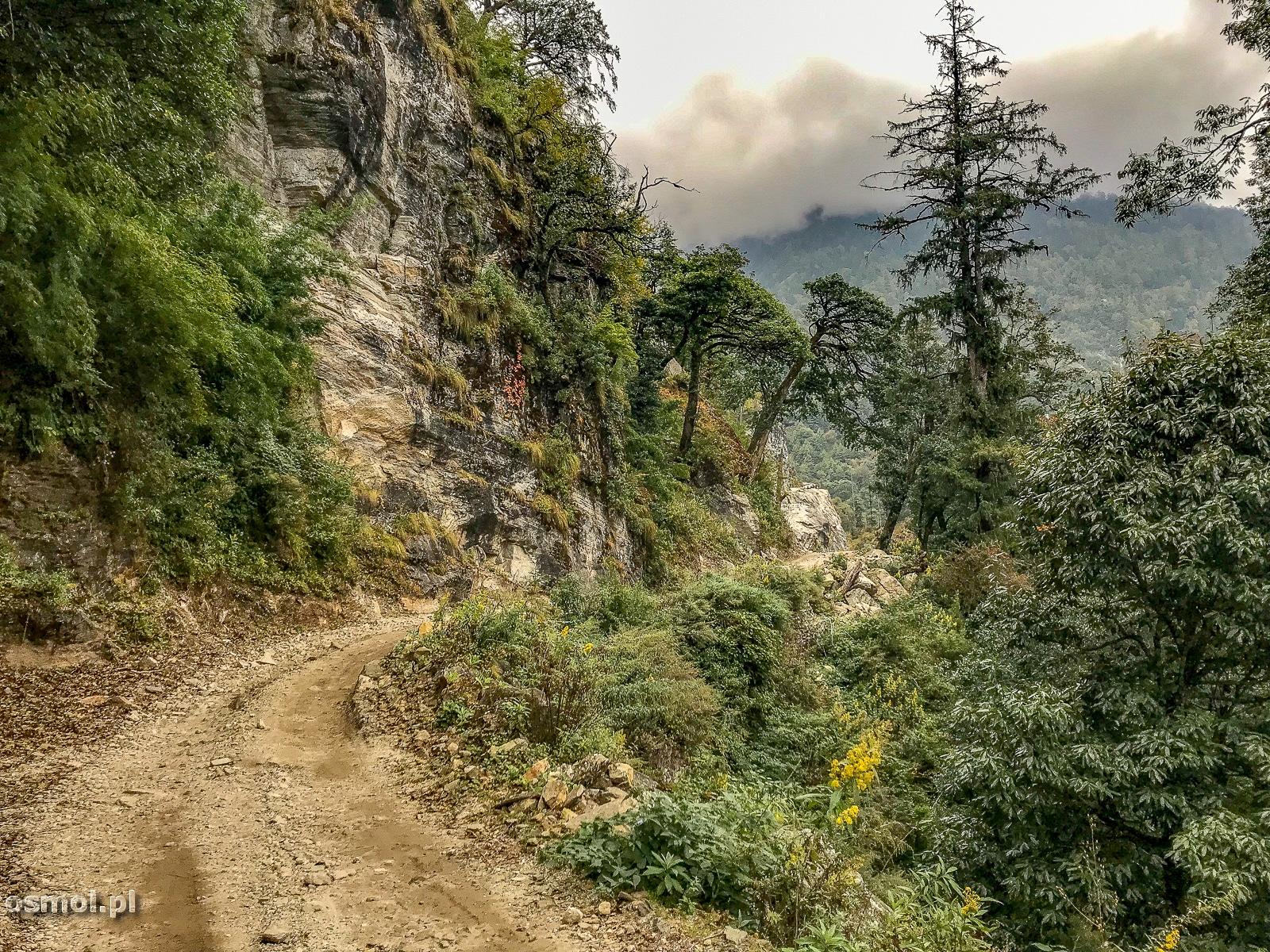 Droga na szlaku dookoła Annapurny.