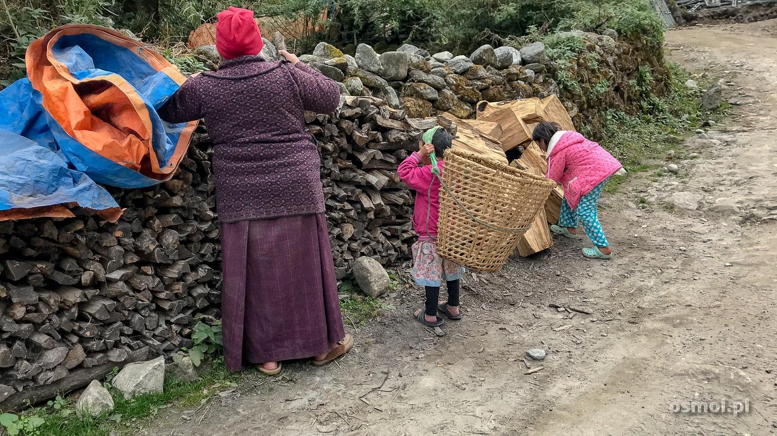Dzieci noszące drewno w Nepalu