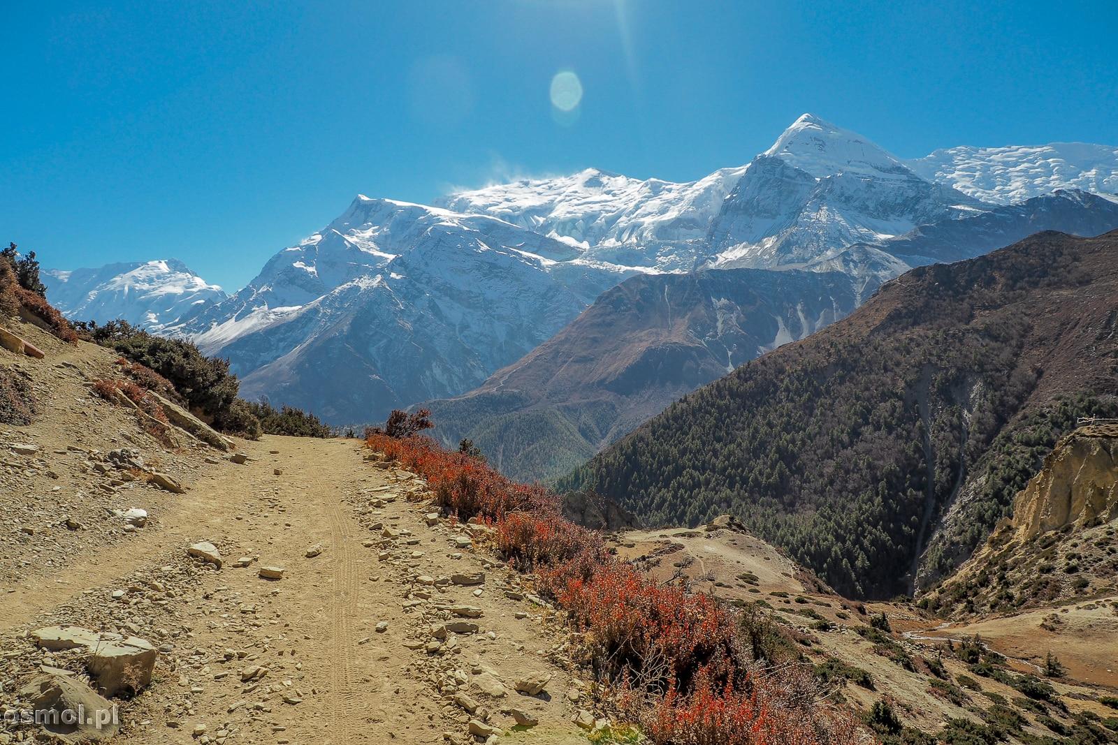 Szlak trekingowy dookoła Annapurny. Absolutne piękno przyrody.