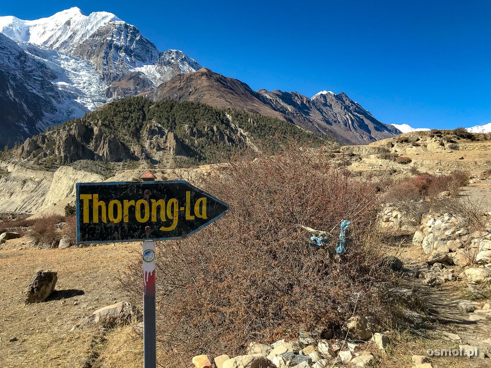 W drodze z Manang wyżej w Himalaje. Aż ku przełęczy Thorong La