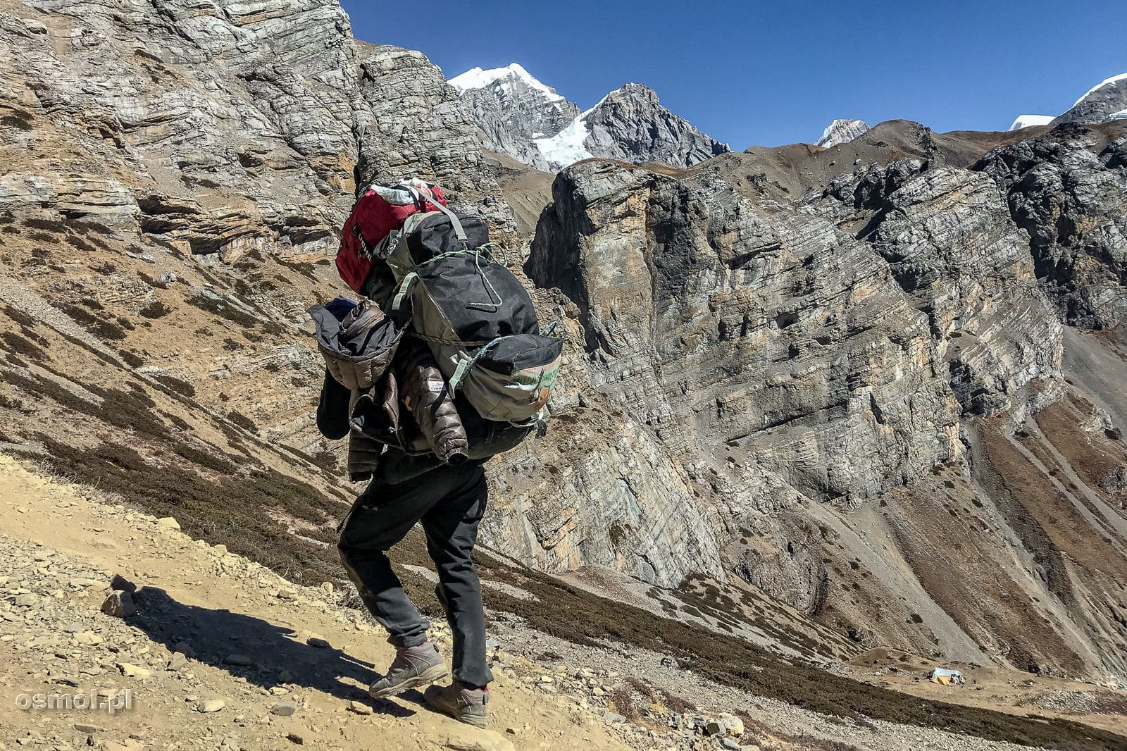 Tragarz na szlaku w Himalajach