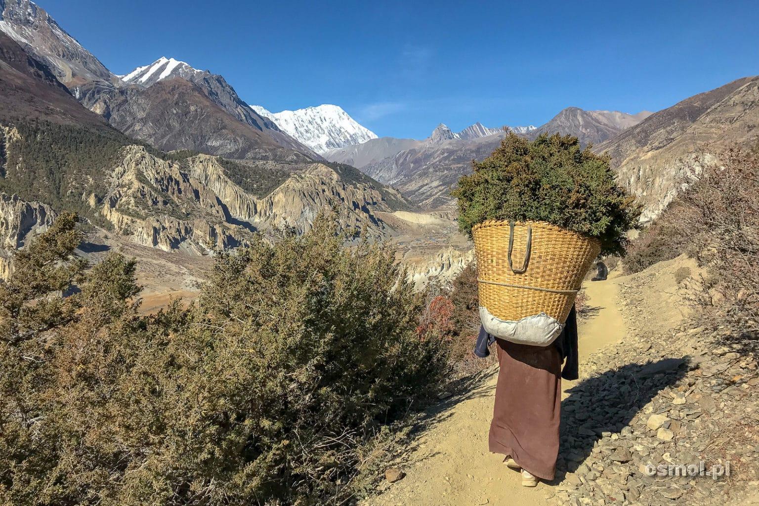 Kobieta z koszem na szlaku w Himalajach