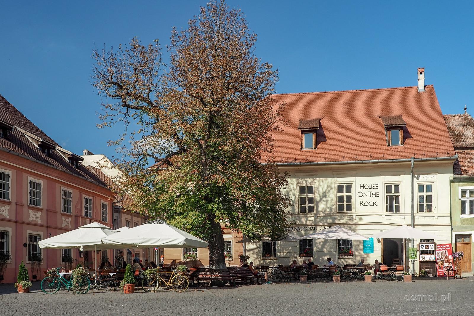 Rynek w Sighișoarze