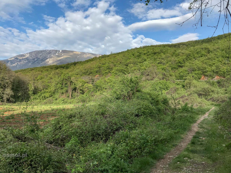 Ścieżka prowadząca od klasztoru św. Nauma