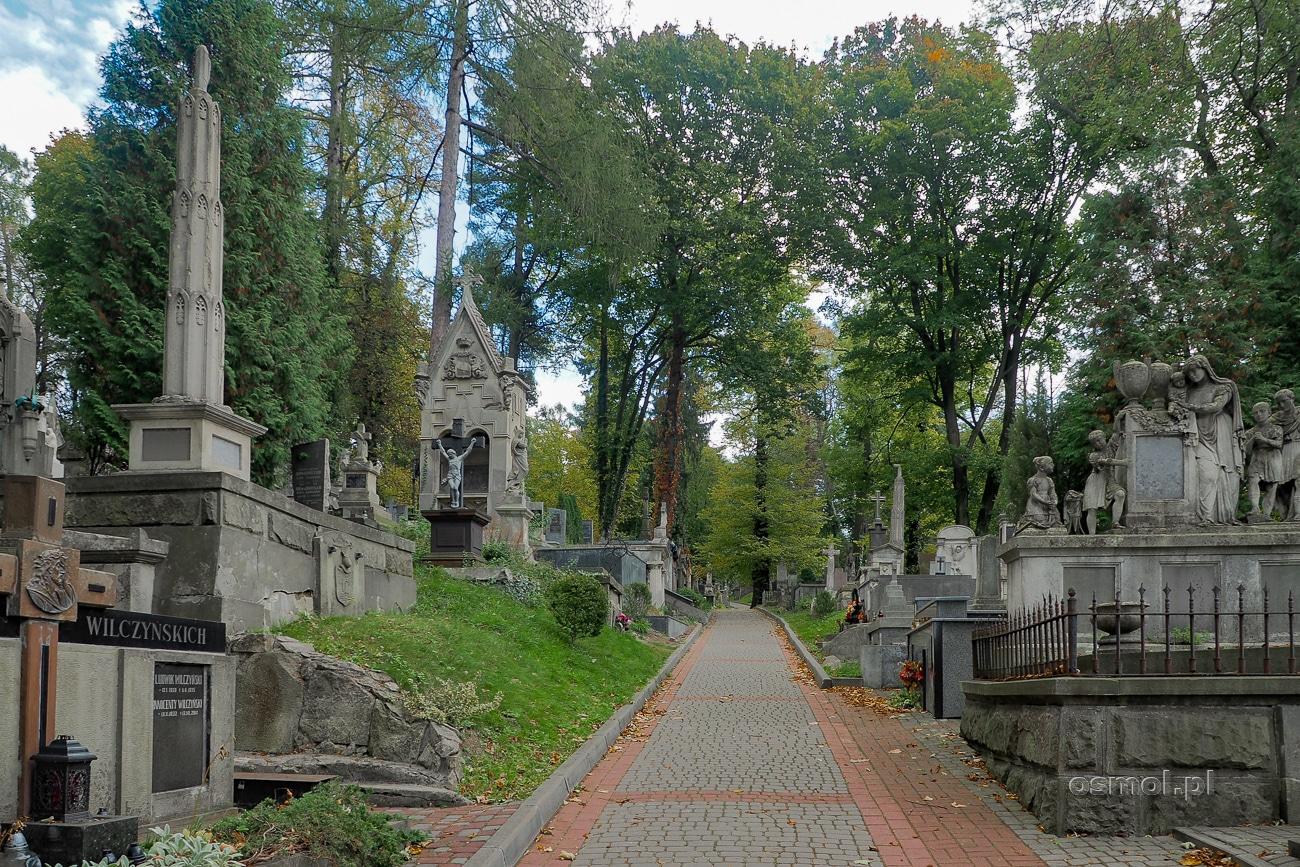 Cmentarz Łyczakowski - aleja pomiędzy grobowcami