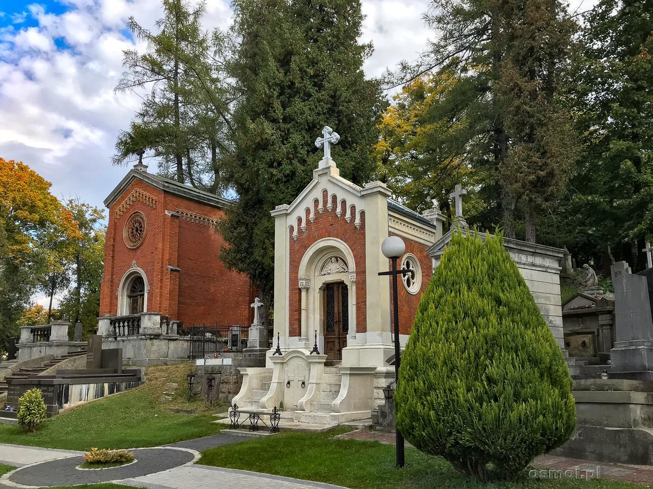 Rodzinne grobowce na Cmentarzu Łyczakowskim