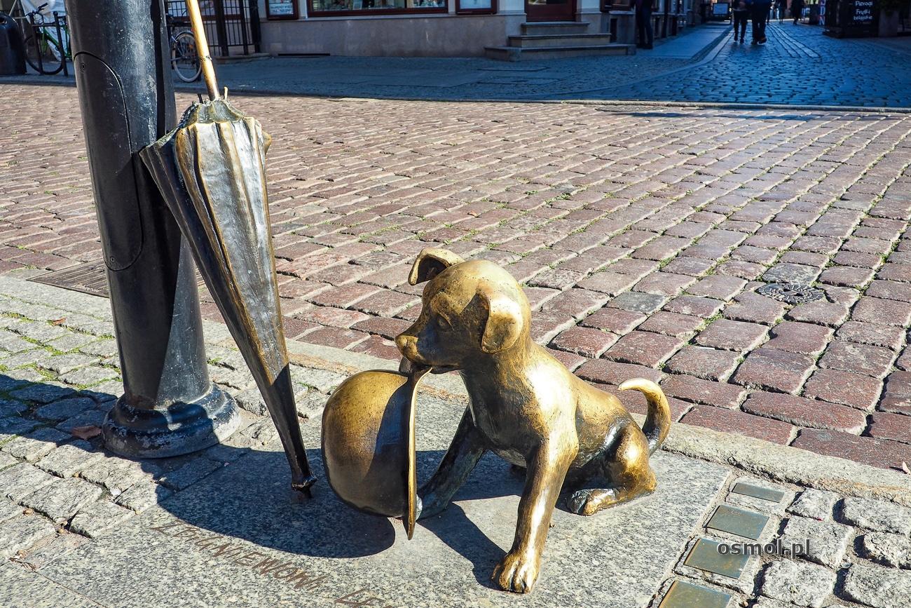 Pomnik Filutka w Toruniu