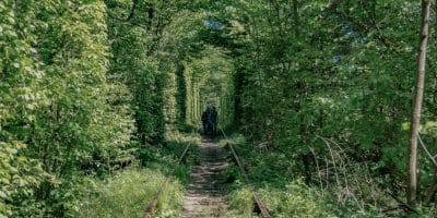Ukraina Tunel Miłości zwany też przez Ukraińców Tunelem Kochania