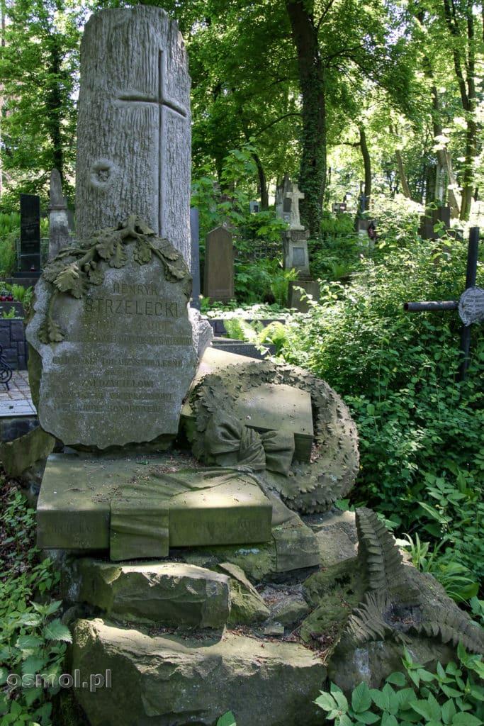 Cmentarz Łyczakowski - jeden ze starych grobów