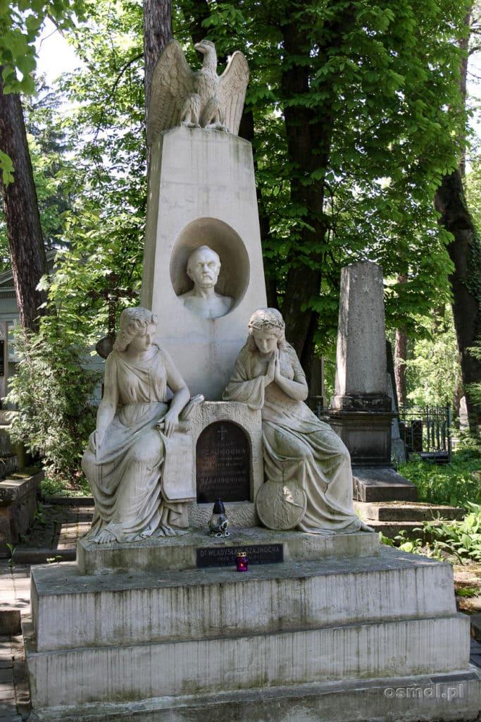 Grób Władysława Szajnochy na Cmentarzu Łyczakowskim we Lwowie