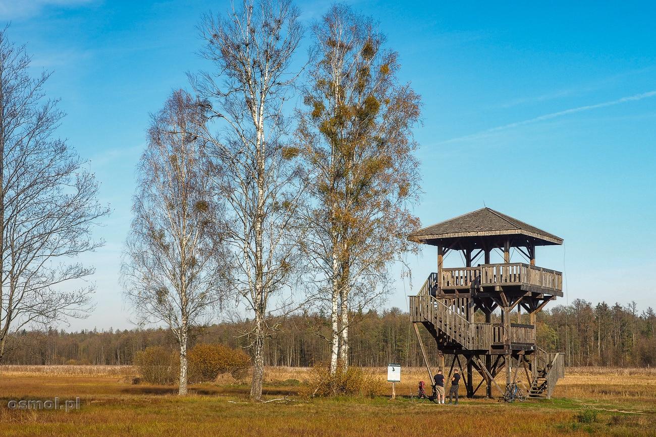 Wieża widokowa na dolinę Narewki