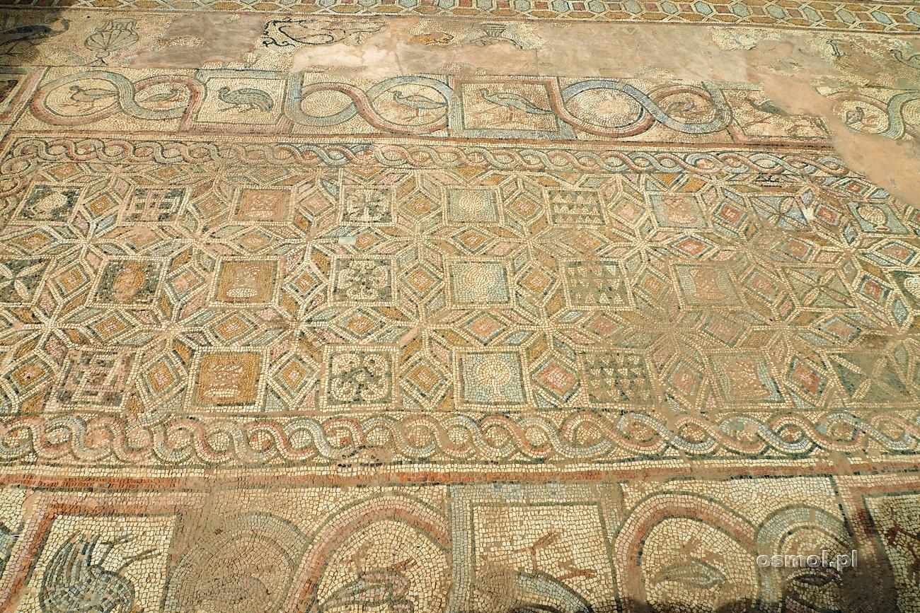 Mozaika podłogowa w Heraklei - Macedonia