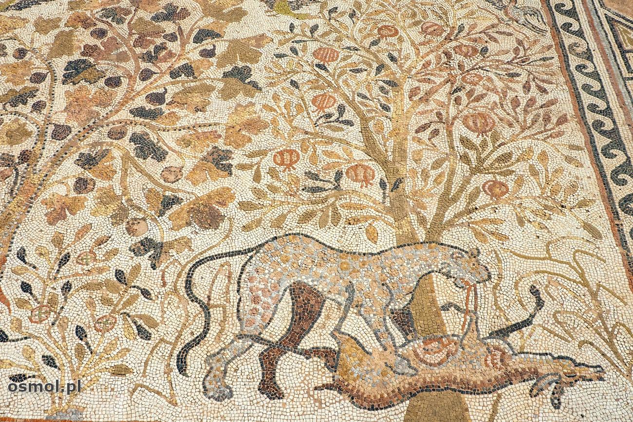 Mozaika Nartex w Heraklei. Na mozaice gepard pożera gazelę pod drzewem granatu.