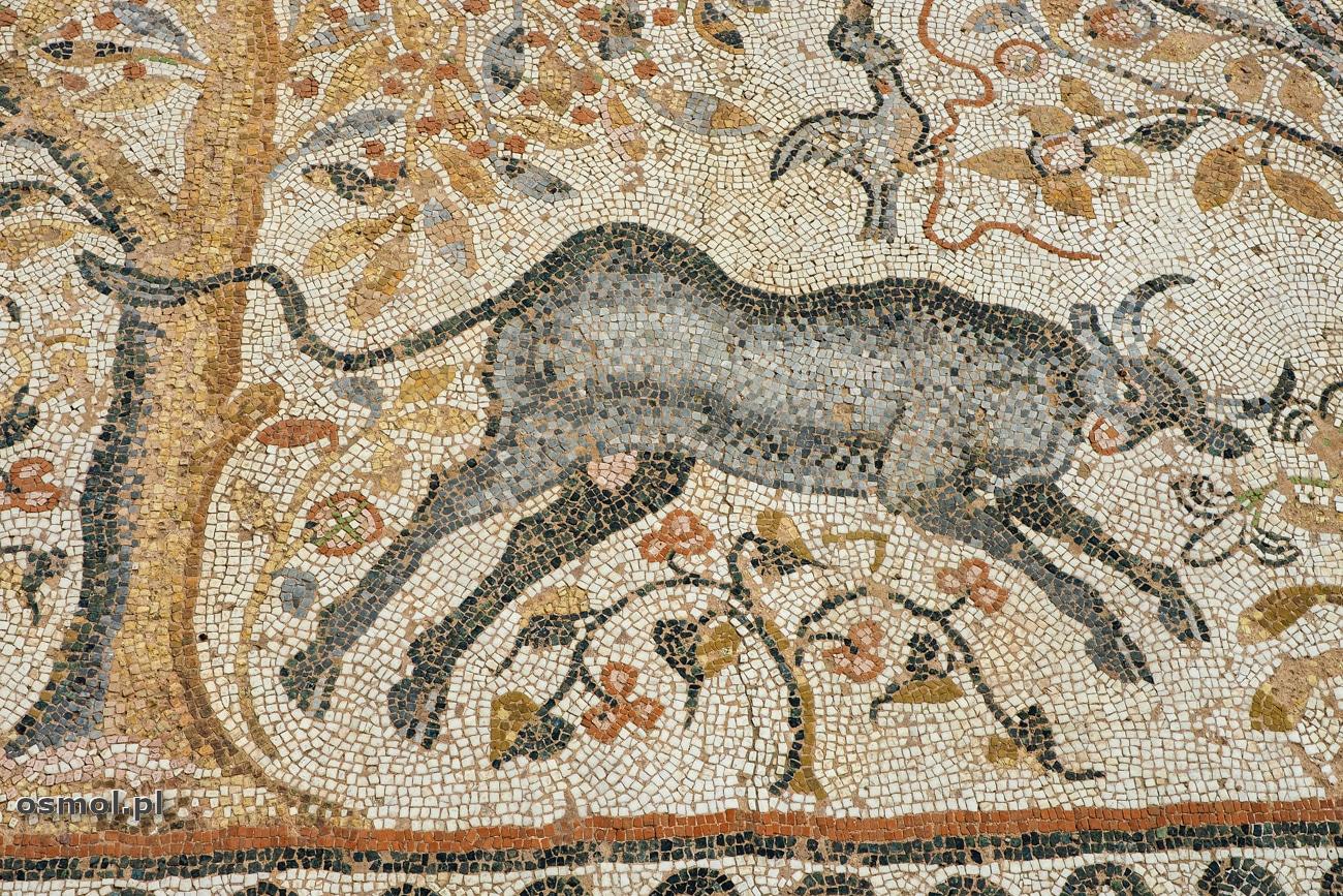 Byk z mozaiki w Heraklei