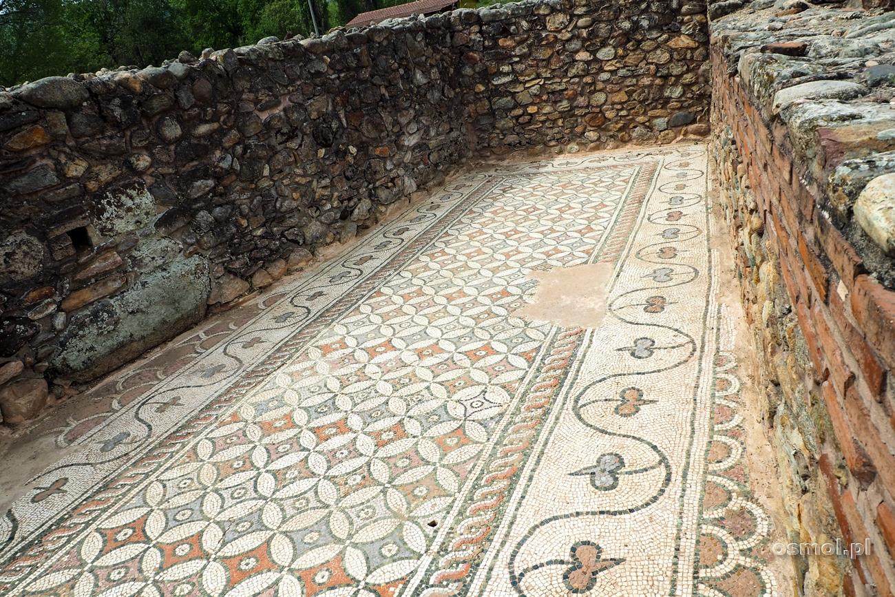 Mozaika w Heraclea Lyncestis