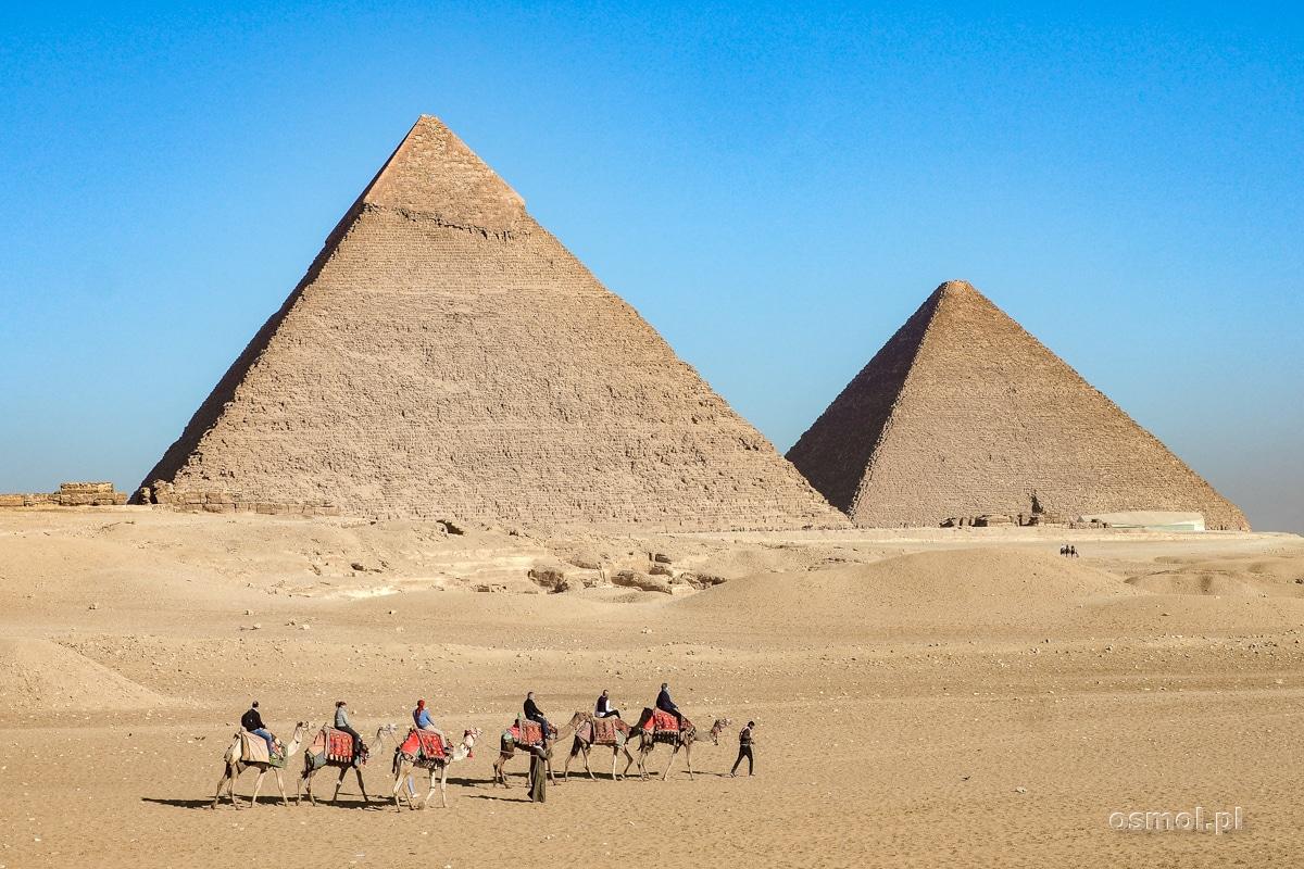 Turyści na wielbłądach na tle piramid