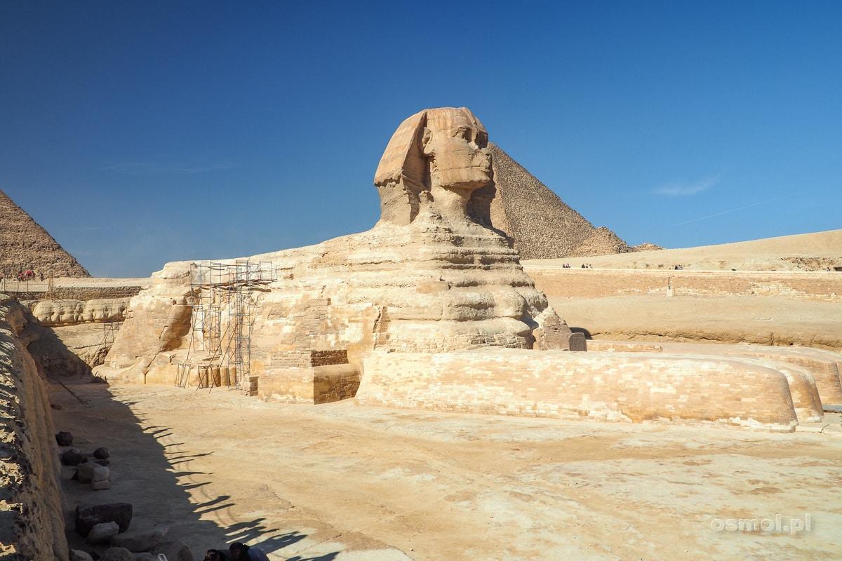 Widok na Wielkiego Sfinksa w Gizie obok kompleksu piramid
