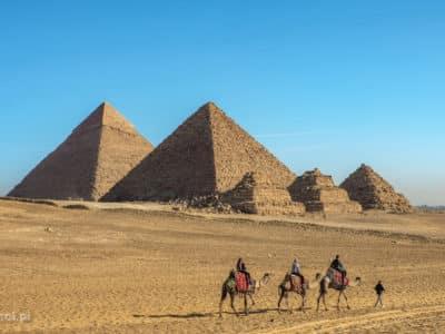 Turyści na wielbłądach przed trzema piramidami w Gizie