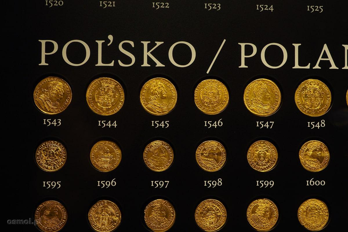 Polskie monety znalezione w złotym skarbie z Koszyc