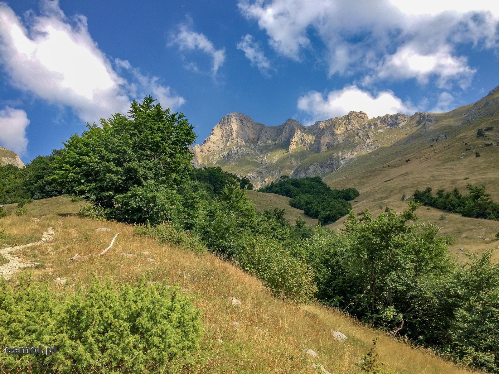 Górskie łąki w Górach Przeklętych. A z łąk słychać dalekie pobrzękiwania dzwonków. To od pasących się na zboczach krów.