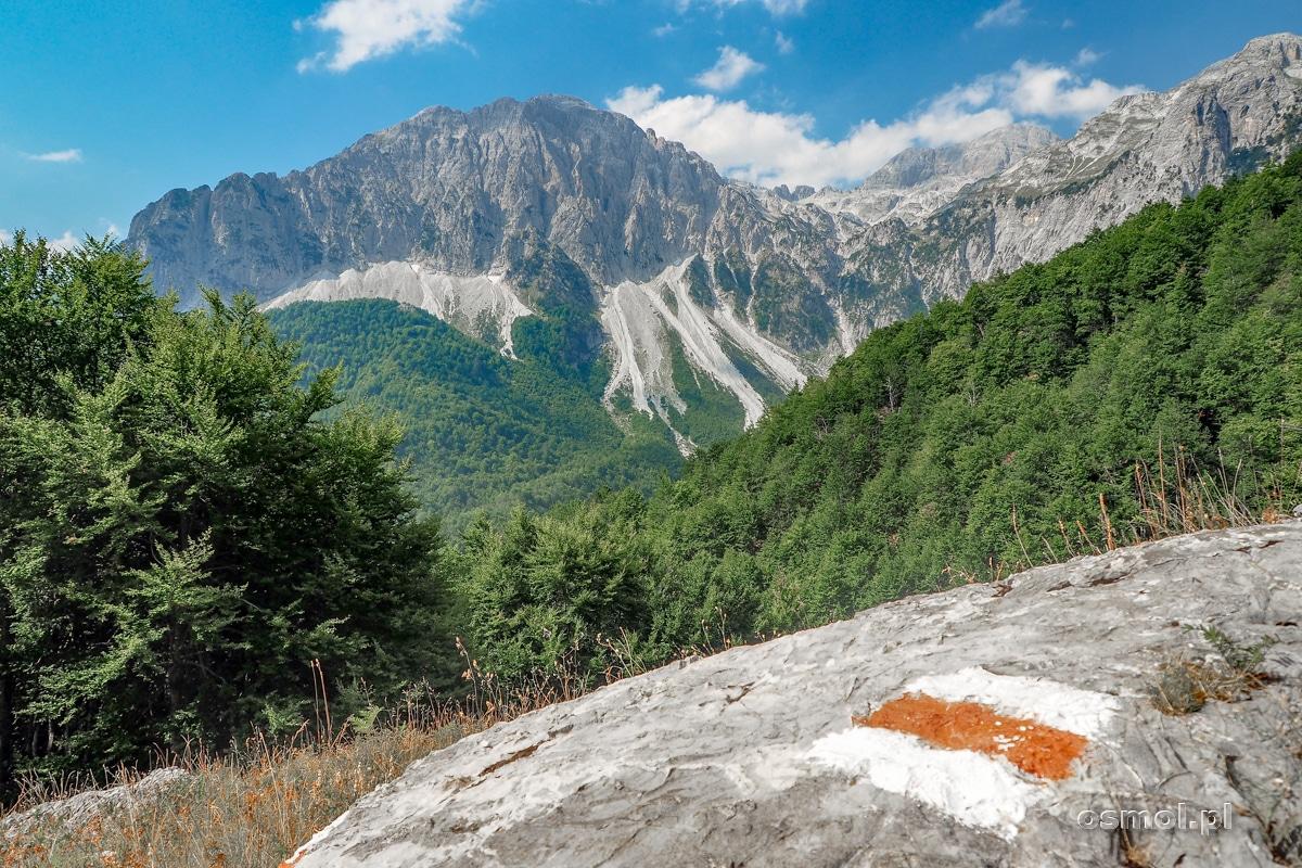 Szlaki w Górach Przeklętych są puste i dość dobrze oznakowane. Zgubienie się nam nie grozi!