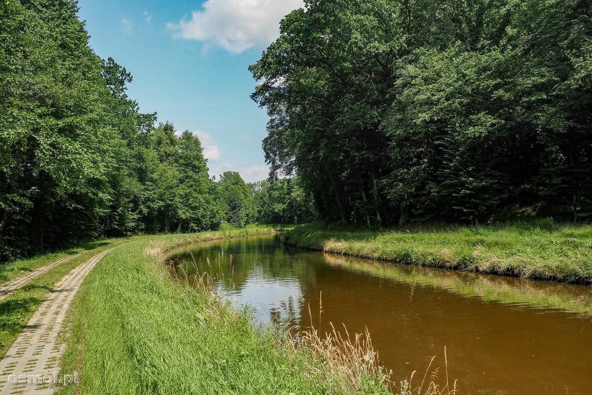 Fragment drogi wodnej Kanału Elbląskiego