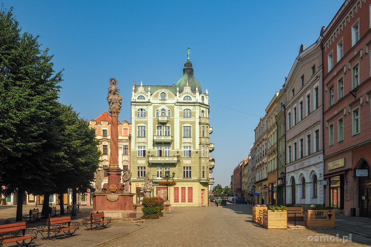 Rynek w Świdnicy i kolumna św. Trójcy