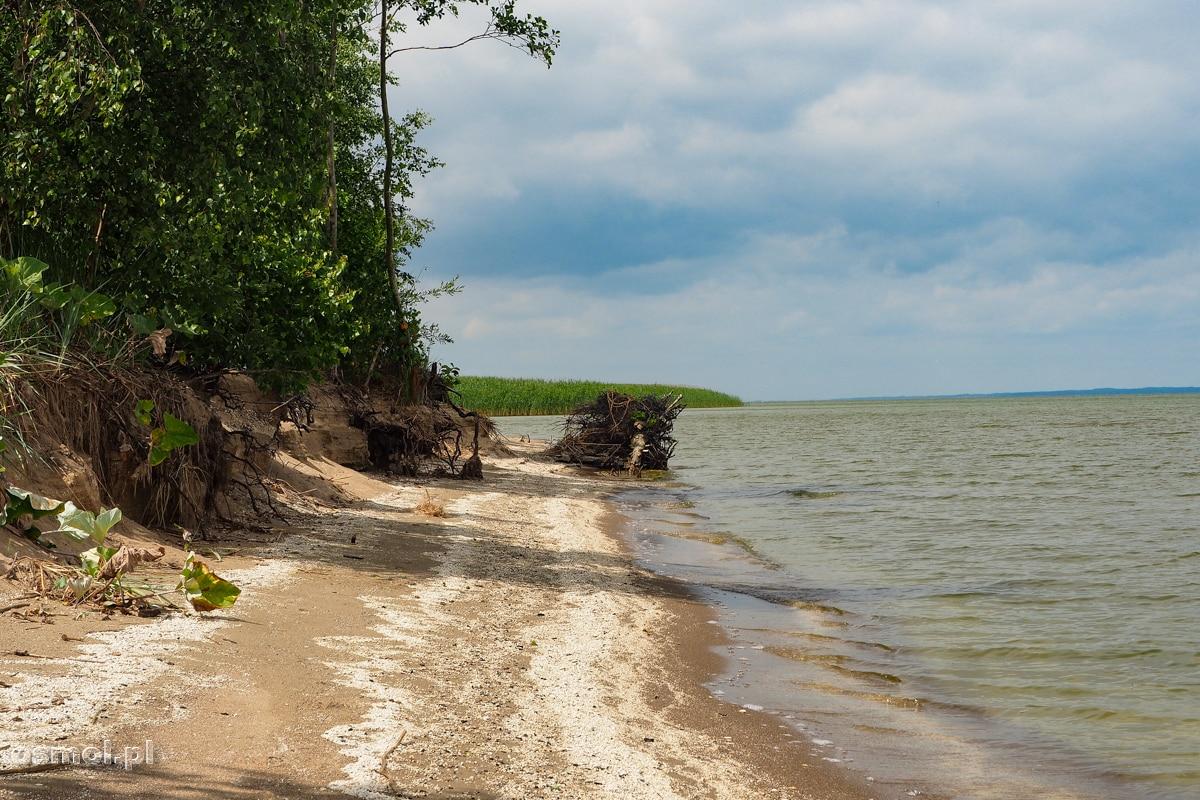 Plaża blisko Świętego Kamienia Prusów