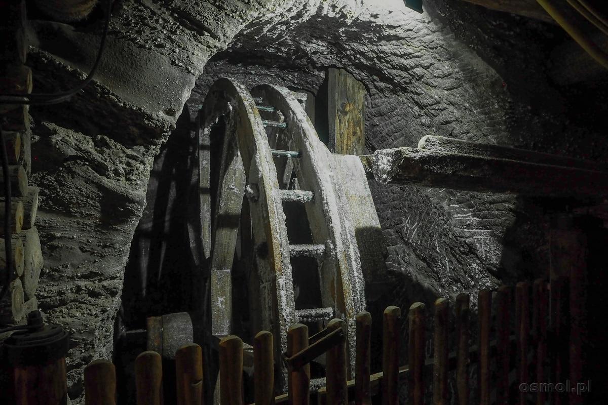 Koło czerpakowe. Tu praca w kopalni soli była najcięższa a p