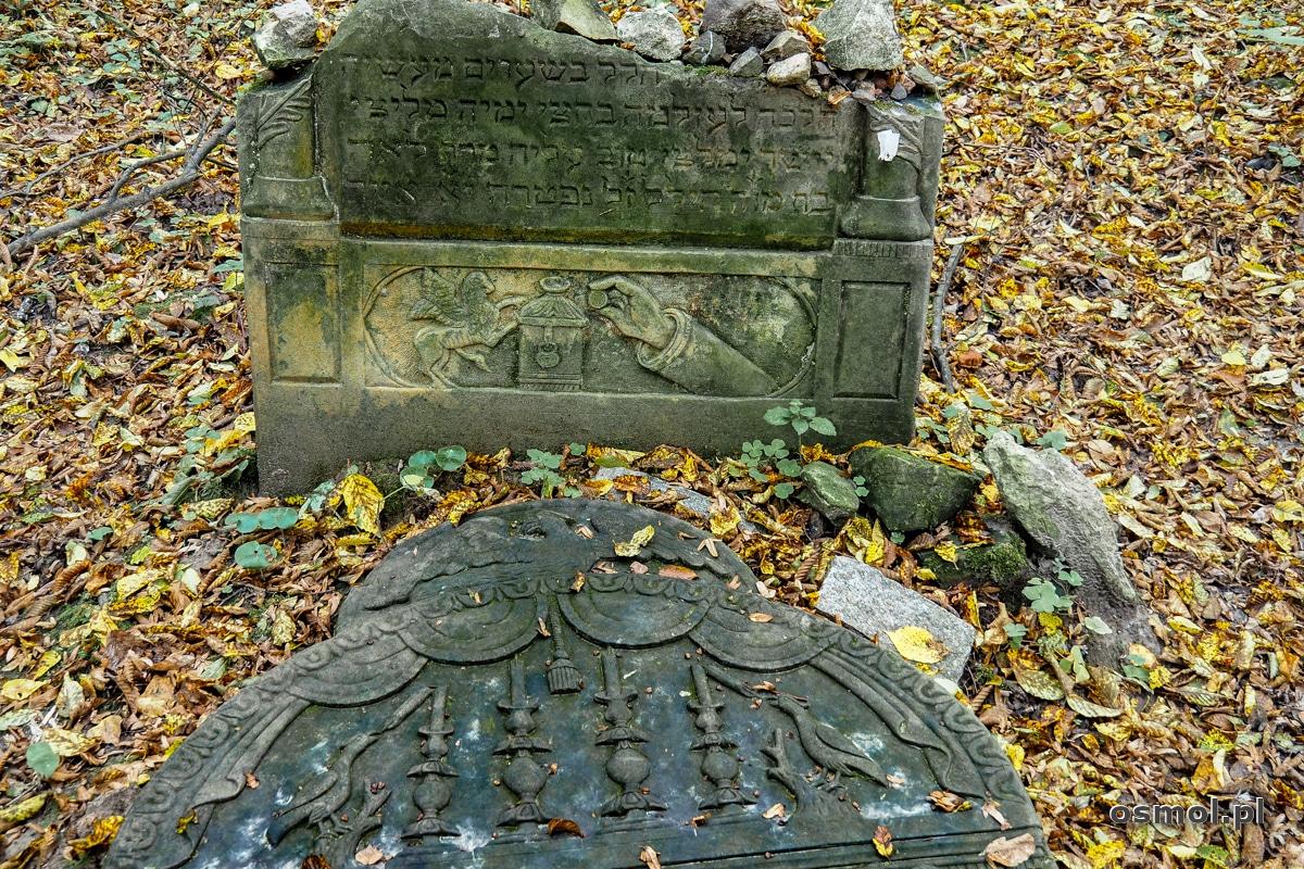 Żydowski nagrobek na cmentarzu żydowskim w Kazimierzu Dolnym