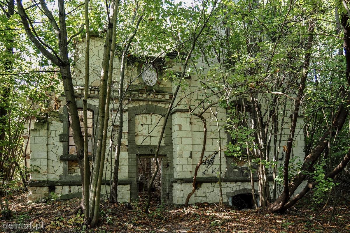 Ruiny willi Stanisława Szukalskiego na Albrechtówce w Kazimierzu Dolnym