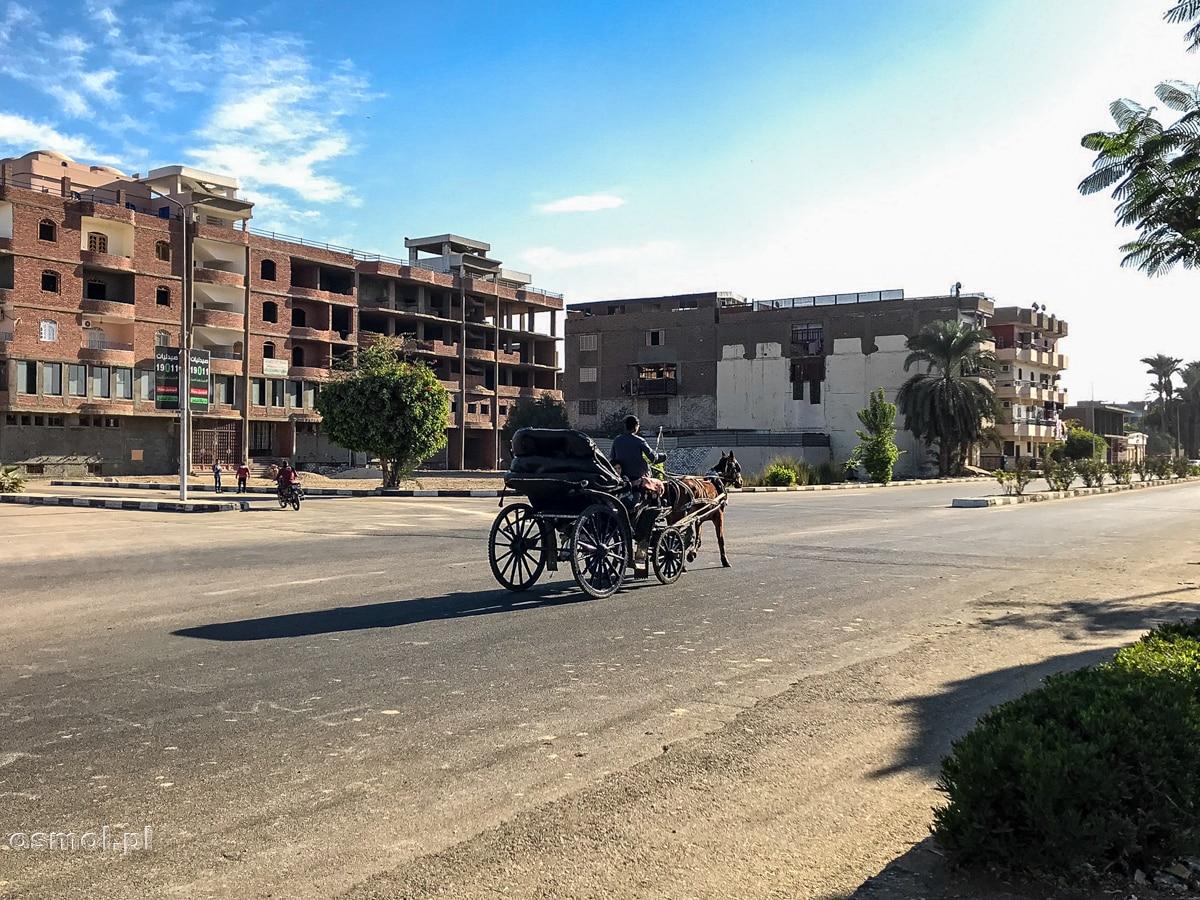 Bryczka konna, jeden z rodzajów transportu w Luxorze