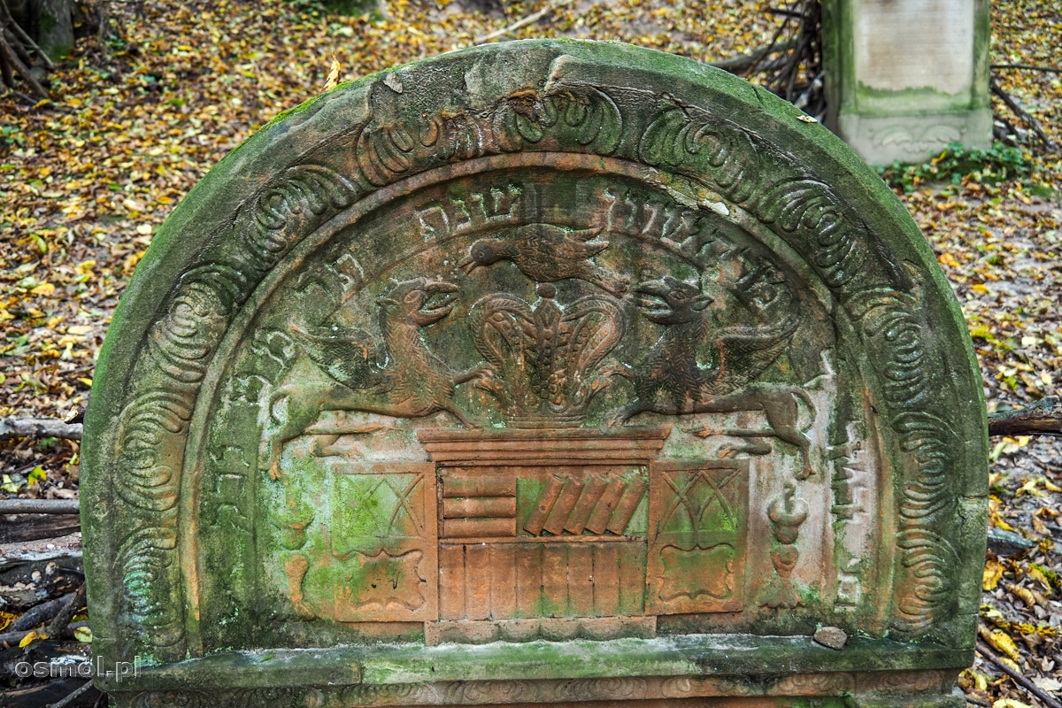 Fragment macewy z płaskorzeźbą. Księgi na płaskorzeźbie oznaczają grób uczonego w Piśmie