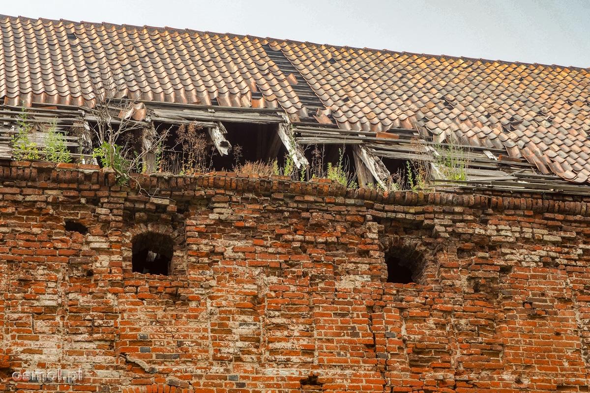 Niszczejący dach na Zamku Kapituły Warmińskiej w Pieniężnie