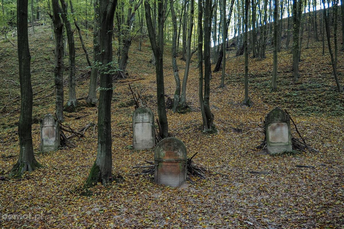 Macewy na cmentarzu żydowskim w Kazimierzu Dolnym