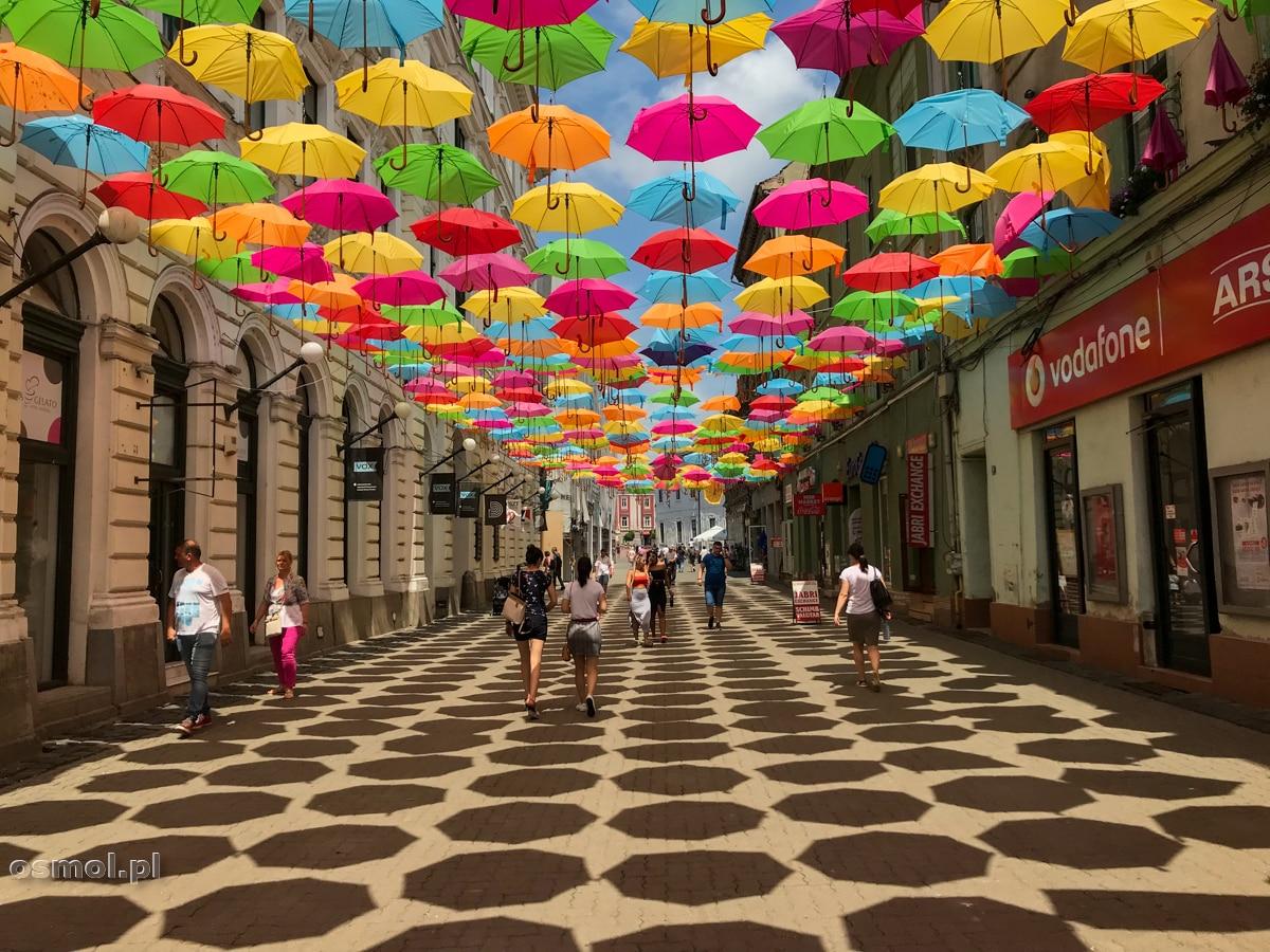 Ulica pod parasolkami w Timisoarze