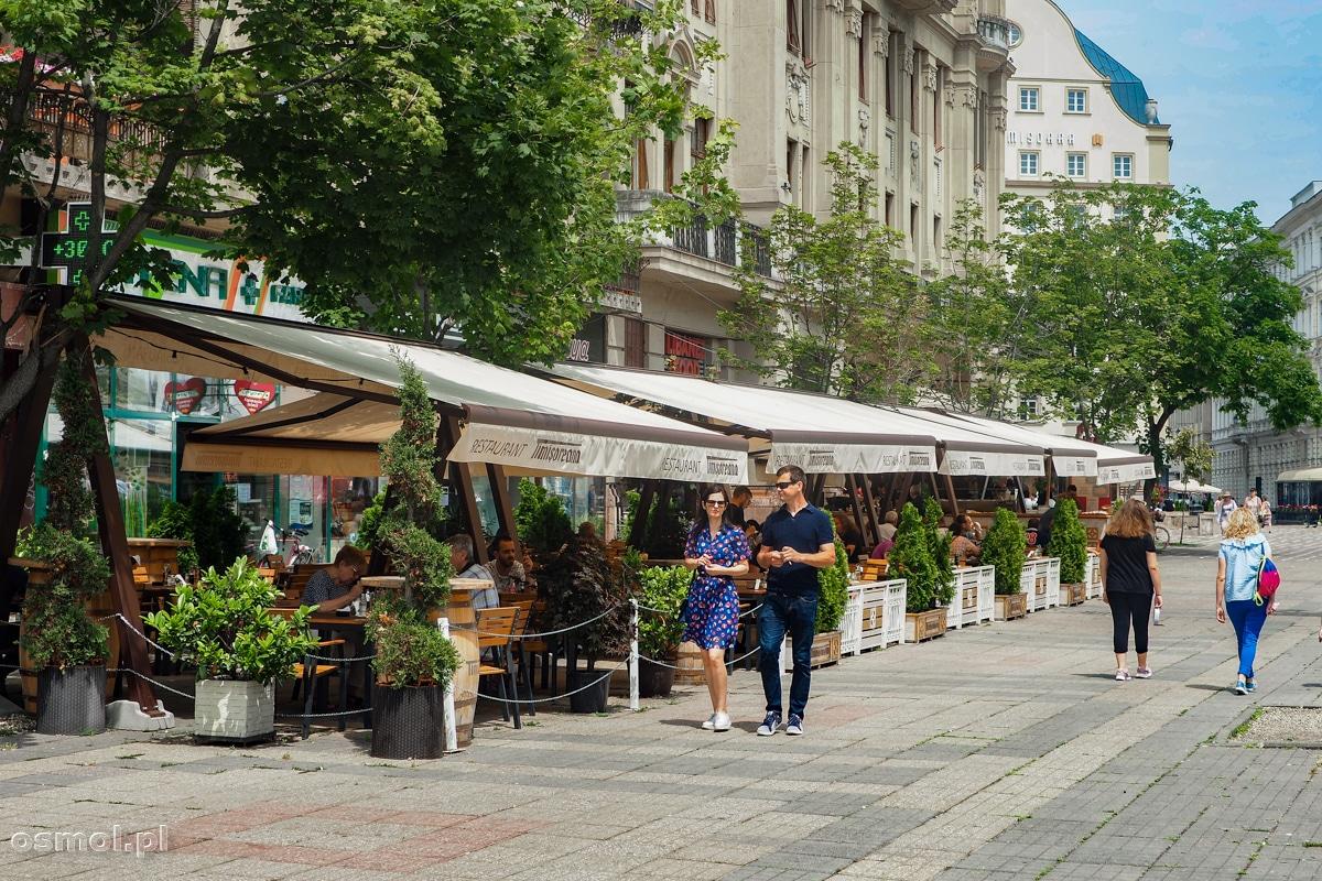 Restauracje na Placu Zwycięstwa w Timisoarze
