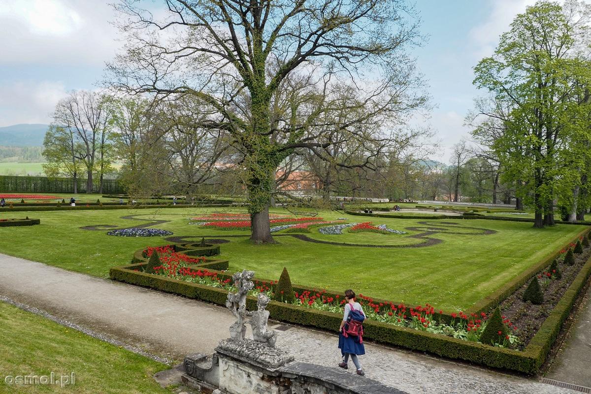 Ogrody pałacowe przylegające do zamku