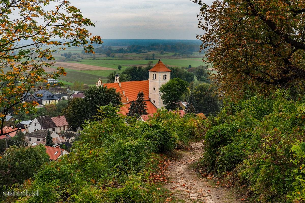 Widok na Janowiec ze ścieżki prowadzącej do zamku