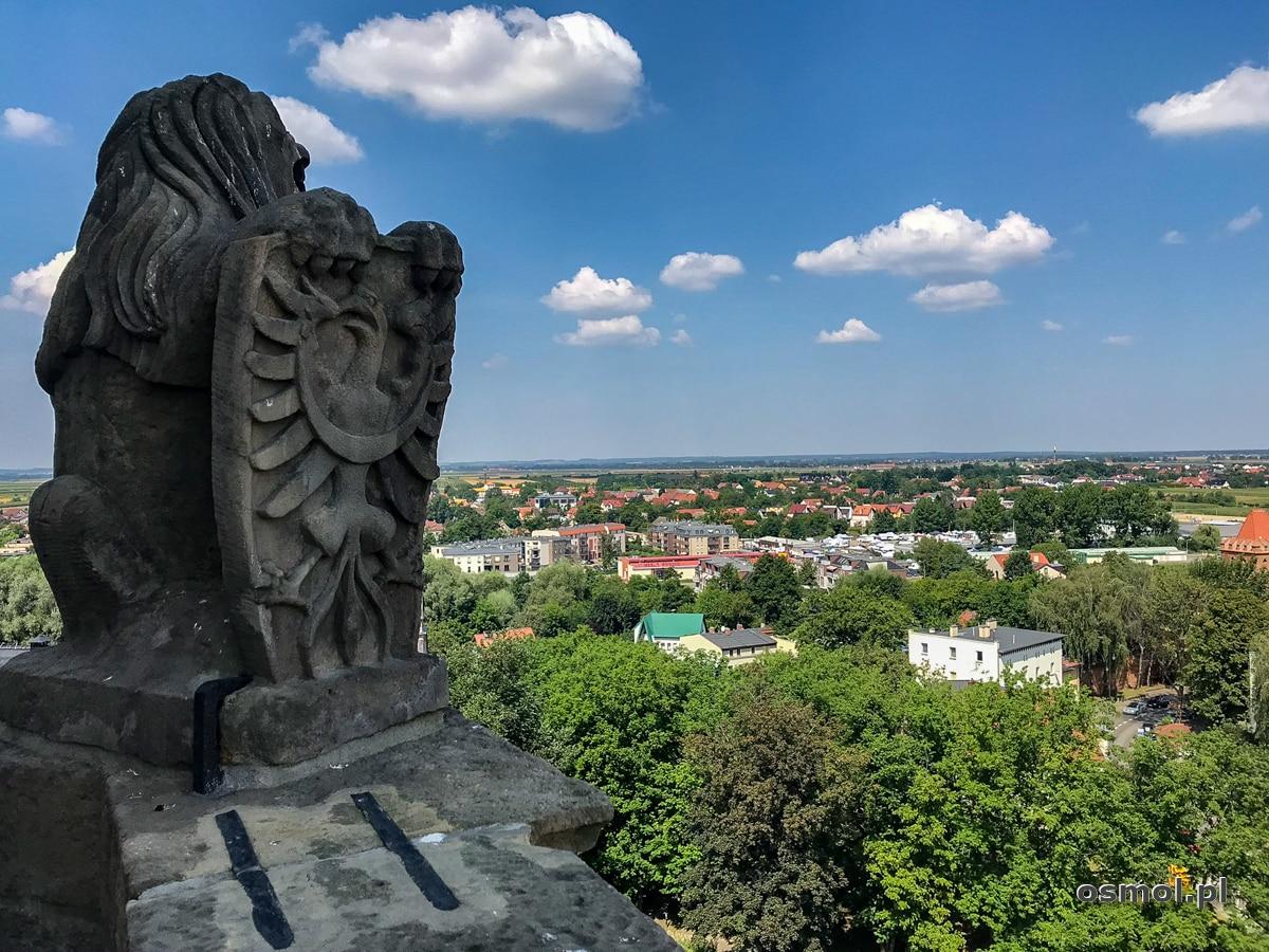 Lew z herbem wieńczący wieżę zamkową w Oleśnicy