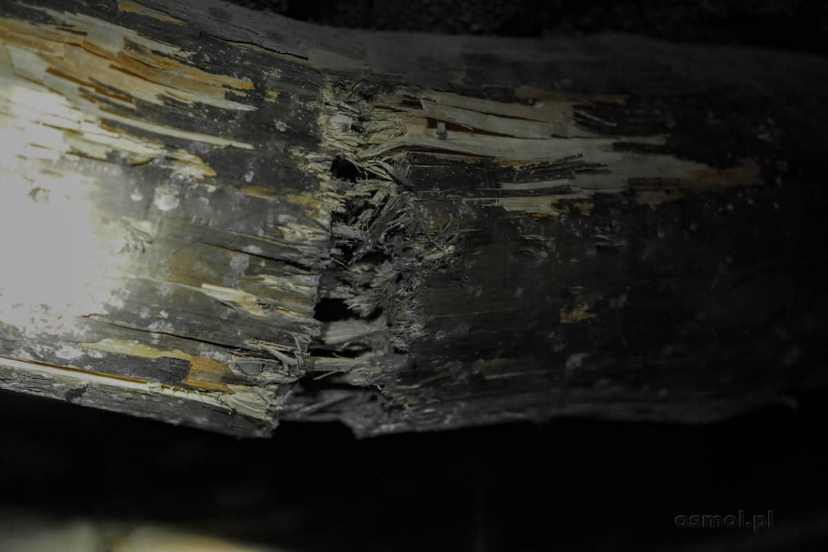 Pęknięte stemple pokazują, jak potężne są ruchy górotworu. Drewno pęka jak zapałki