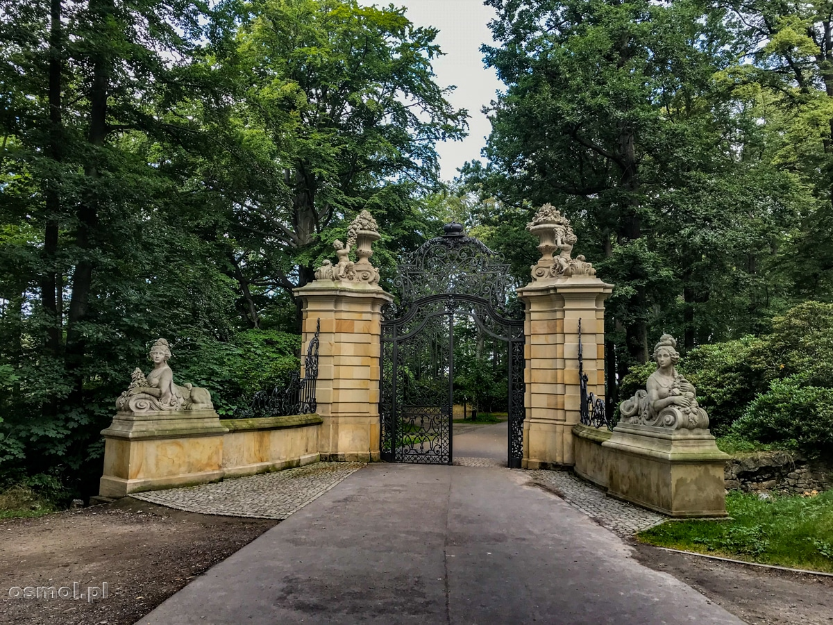 Alejka w parku prowadząca do zamku Książ