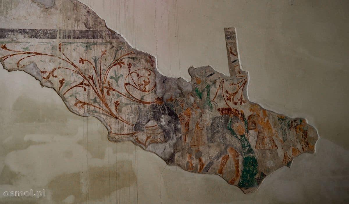 Fragment odkrytych polichromii z kościoła św. Piotra i Pawła w Chełmnie