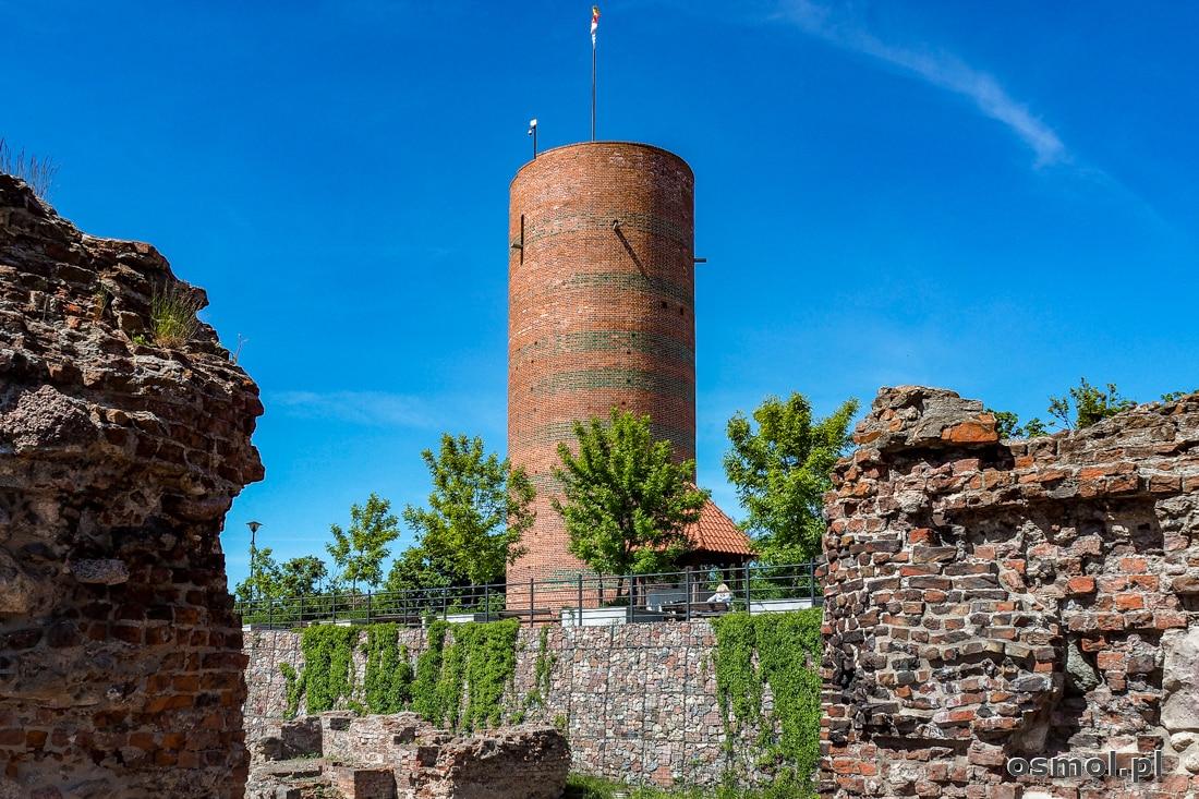 Ruiny zamku krzyżackiego i wieża Klimek w Grudziądzu