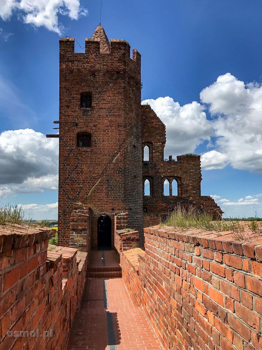 Na blankach zamku w Radzyniu Chełmińskim