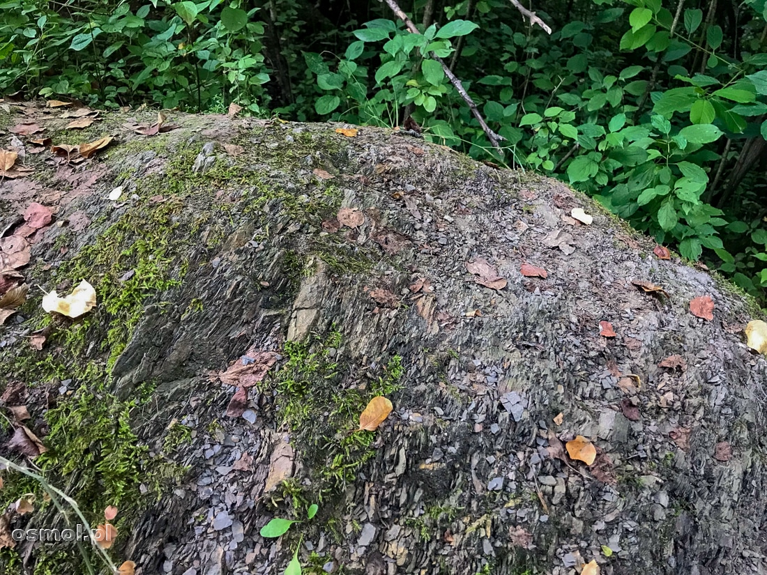 W Górach Pieprzowych widać, że górotwór przekręcił pokłady geologiczne o 90 stopni a czasami więcej